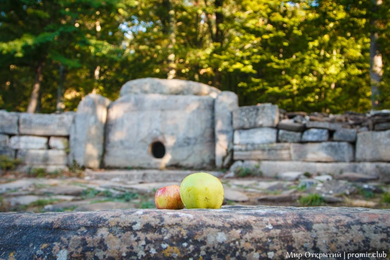 Натюрморт с яблоками у дольмена, долина реки Жане, Краснодарский край