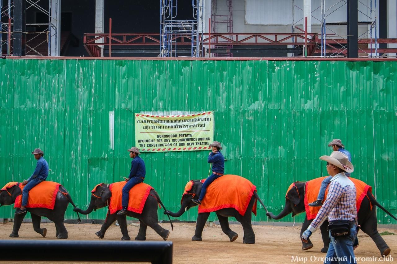Представление слонов в парке Нонг Нуч, Паттайя
