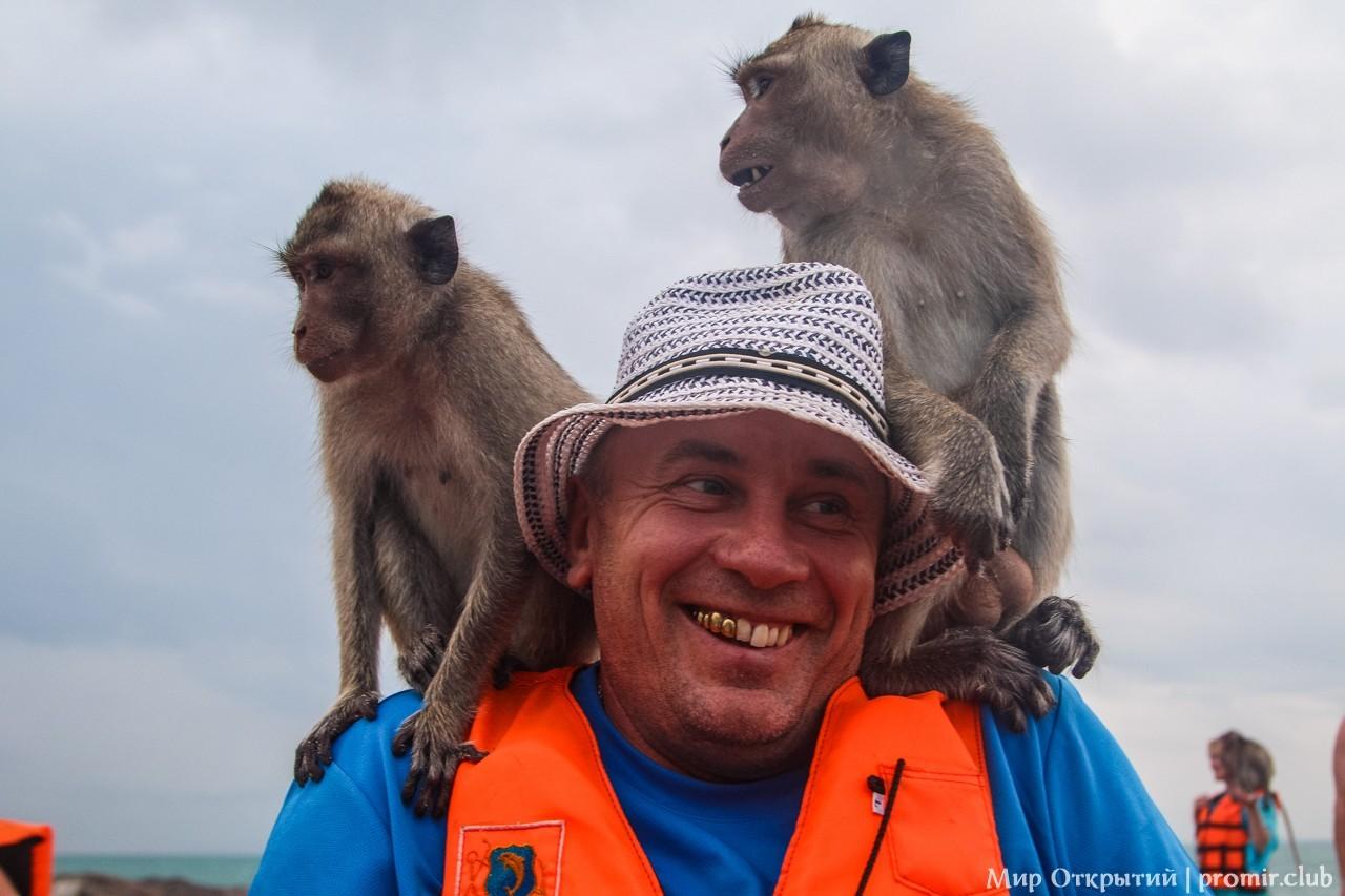 На острове обезьян, Сиамский залив, Паттайя