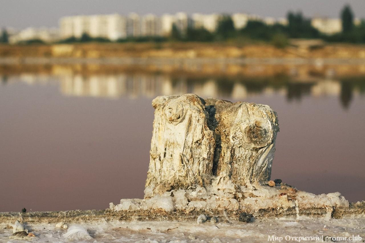 Озеро Мойнаки, Евпатория, Крым