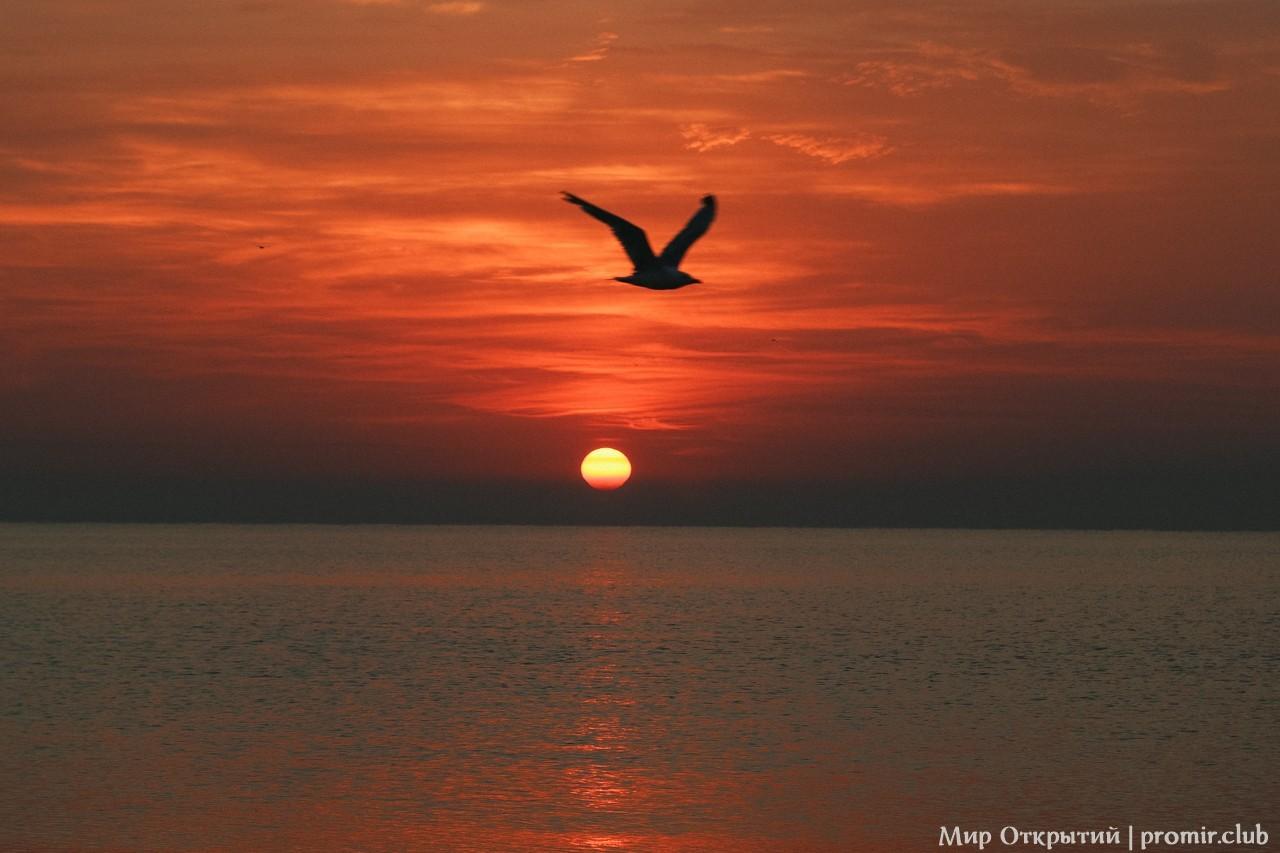 Восход солнца, Феодосия